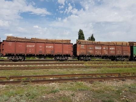 коричневые вагоны с лесом
