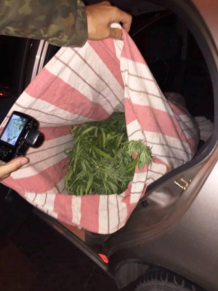Перевозка марихуаны самолетом фото конопли и мака